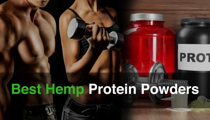 Best Hemp Protein Powders Cover Image