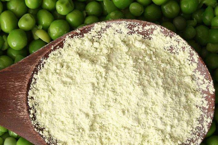 pea protein powder scoop