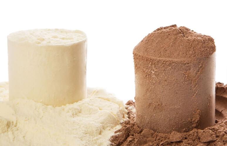 whey vs pea protein powder