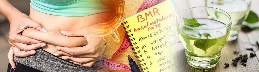 Benefits Of Green Tea Fat Burner