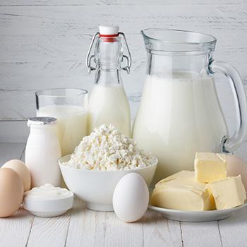 vegan protein bar ingredients