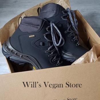 Wills Vegan Shoes in Bag