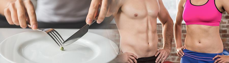 Appetite Suppression & Fat Metabolism