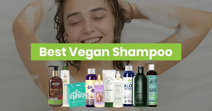 Best Vegan Shampoo Featured Image
