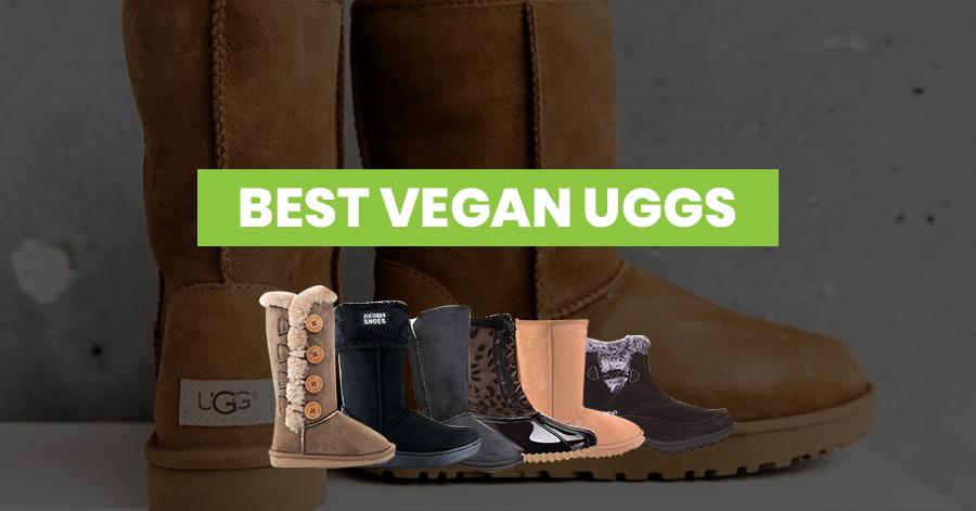 Best Vegan UGGs Featured Image