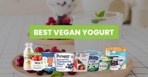Best Vegan Yogurt Featured Image