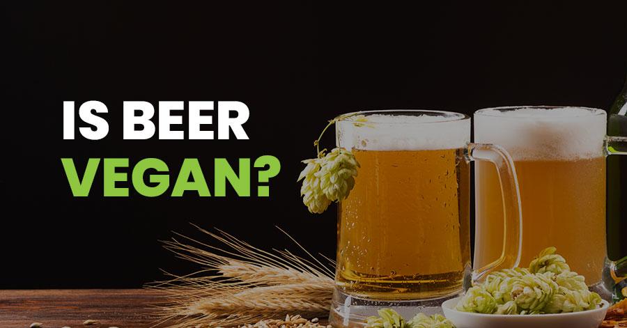 Is Beer Vegan Featured Image