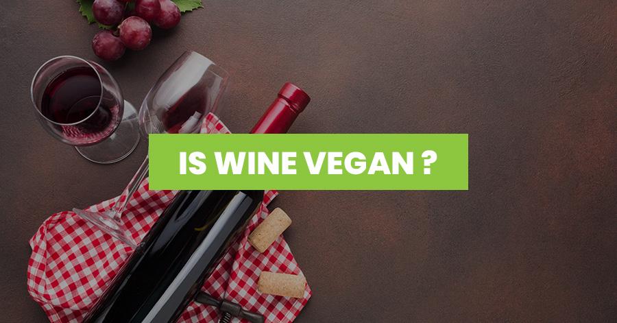 Is wine vegan featured image