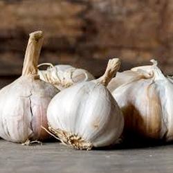 garlic thumb