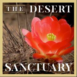 the desert sanctuary thumb