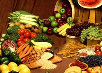 food nutrients