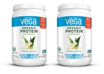 vega organic protein landscape