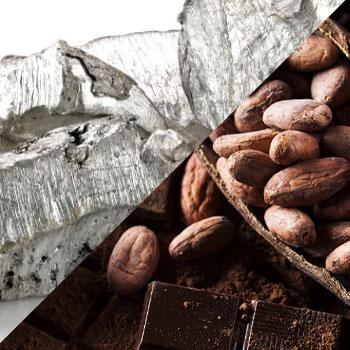Cadmium in Cacao