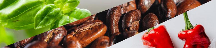 green tea leaf, coffee beans and cayenne pepper