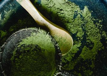powderized broccoli in a plate